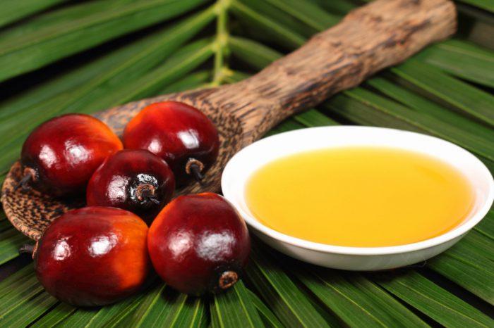 prezentacja oleju palmowego