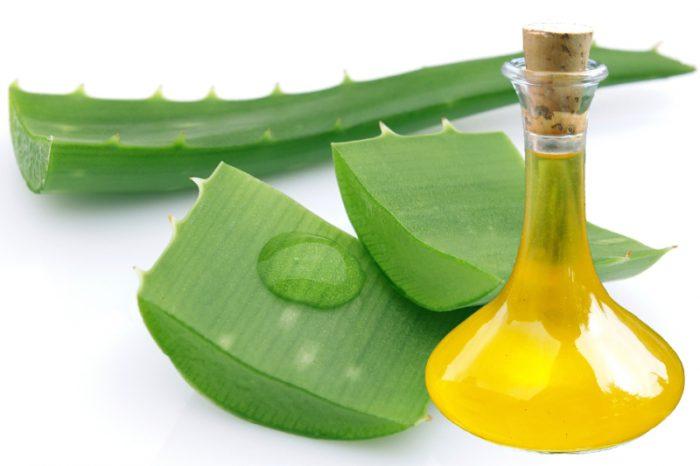 Znalezione obrazy dla zapytania olej aloesowy
