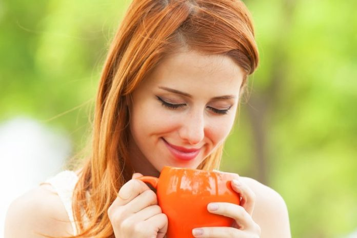 herbata z ostropestu