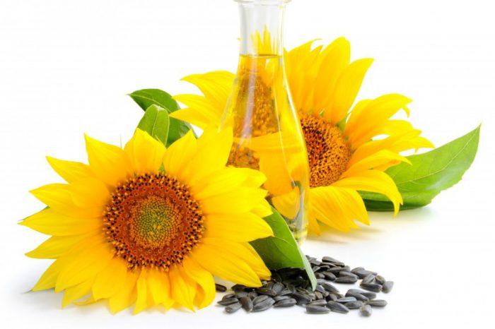 olej słonecznikowy
