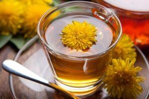 herbata z mniszka