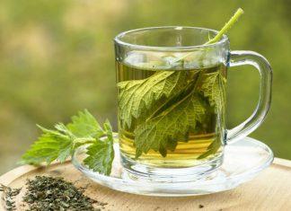 herbata z pokrzywy