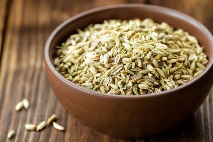 nasiona kopru włoskiego