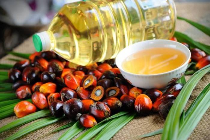 Olej Palmowy Właściwości I Zastosowania Skarbnica Natury